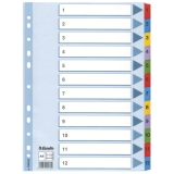 Register Esselte Mylar A4 1-12 flerfarget